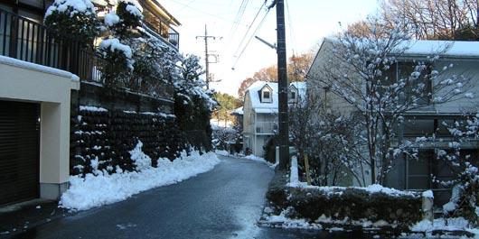 20050101Hazama.jpg