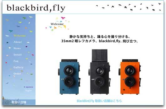 Black-Bird-Fly.jpg