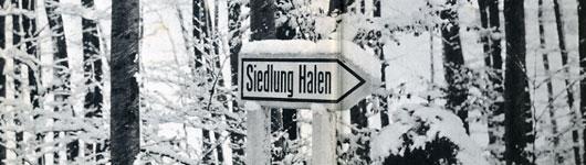 Siedlung-Halen06.jpg